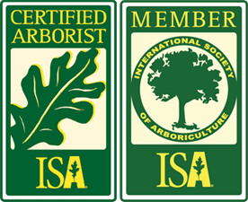 Cascade Tree Works is an ISA Certified Arborist serving Portland OR Gresham Beaverton Vancouver WA Camas Battle Ground